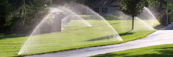 Lawn-water-600px